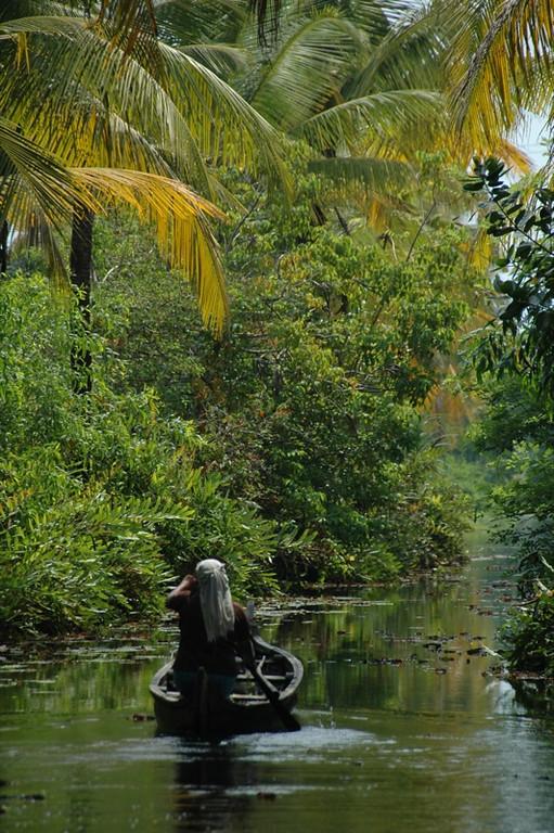 Indian Woman in Boat - Kerala, India