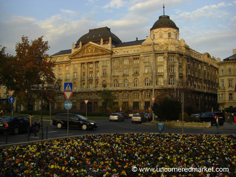 Colorful Flowers and Budapest Architecture, Hungary