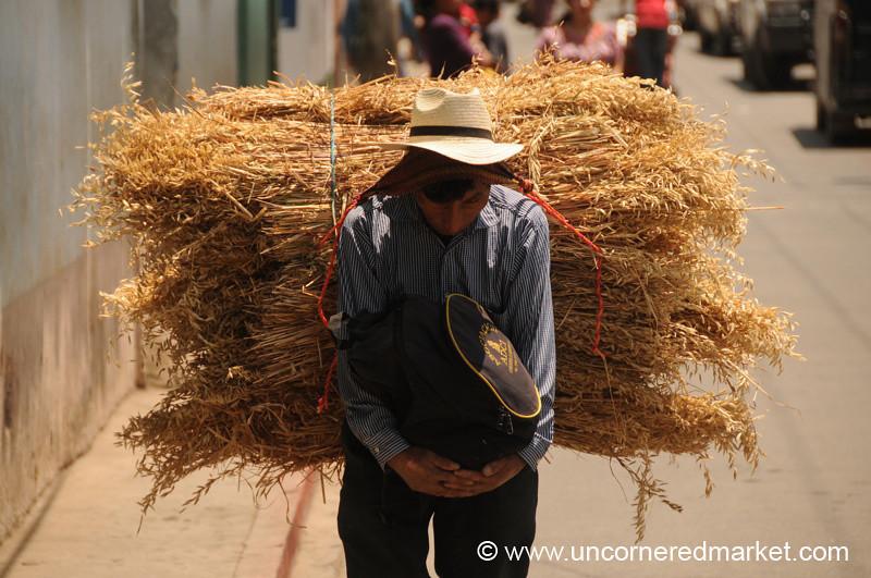 Man Carrying Large Bundle - Totonicapan, Guatemala