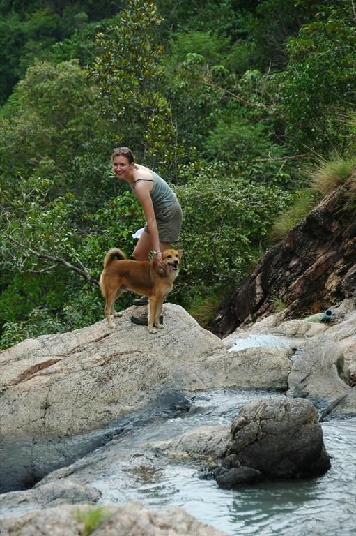 Guide Dog - Haad Yao, Thailand