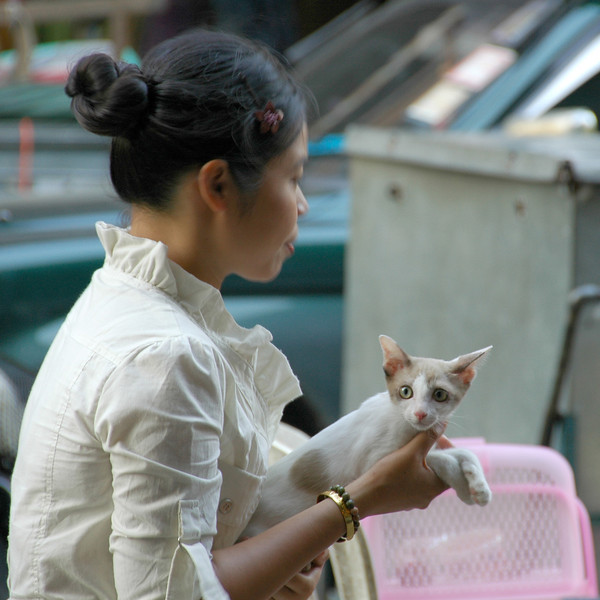 Lady with a Cat - Bangkok, Thailand