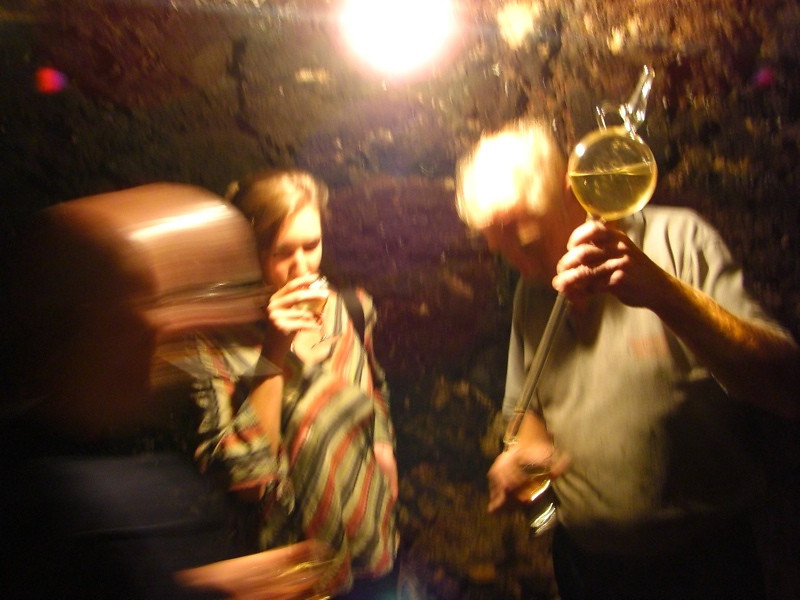 Drinking Wine in Cellar - Pulkau, Austria
