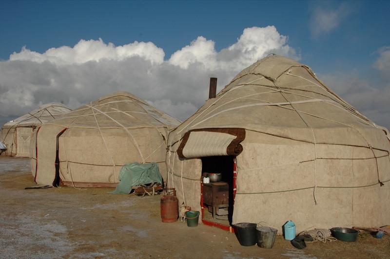 Yurt Neighbors - Song Kul, Kyrgyzstan