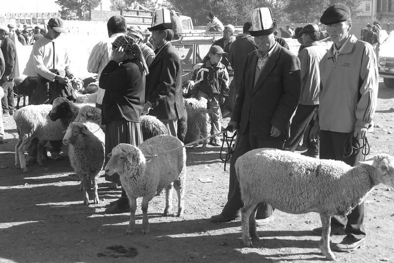 Sheep Vendors at Karakol Animal Market -Kyrgyzstan
