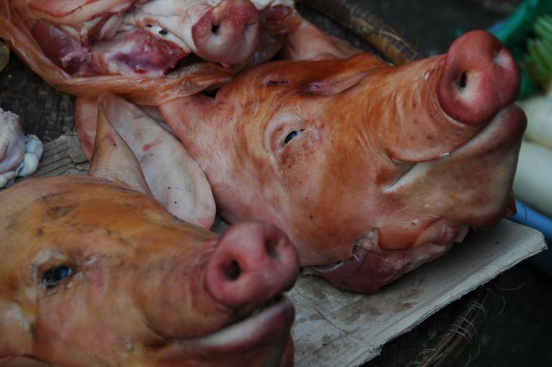 Smoked Pig Heads - Phnom Penh, Cambodia