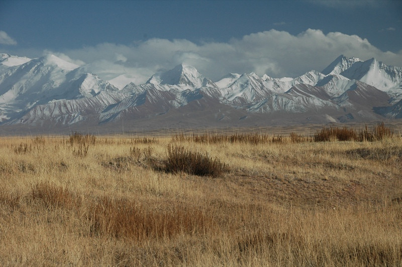 Fields and Snow-Capped Mountains - Lenin Peak, Kyrgyzstan