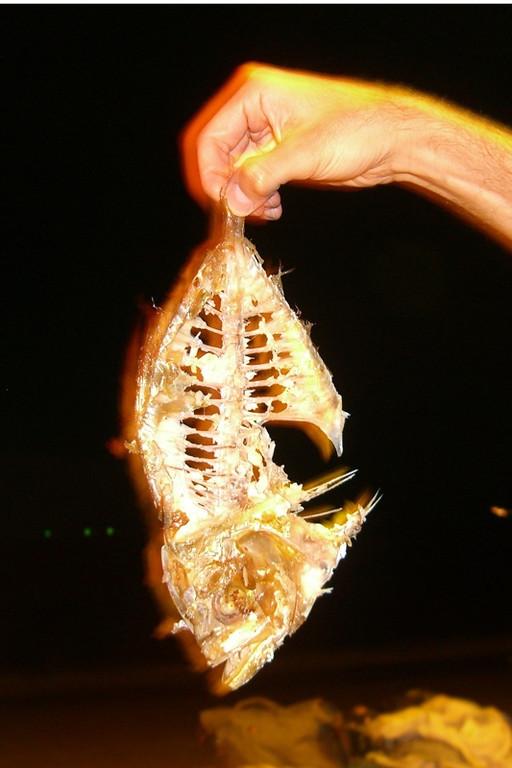 Fish Dinner - Haad Yao, Thailand