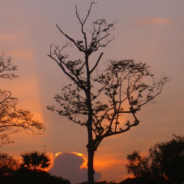 Sunset at Angkor Wat - Angkor, Cambodia
