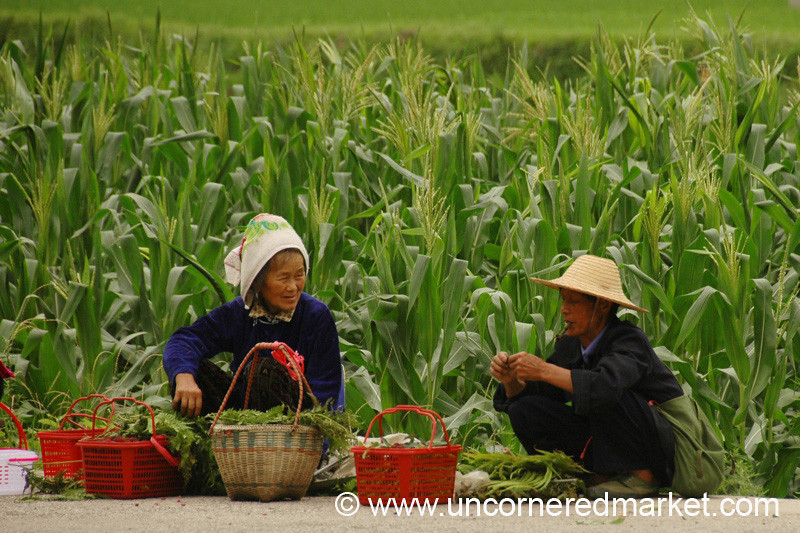 Two Chinese Vendors Chatting - Guizhou Province, China