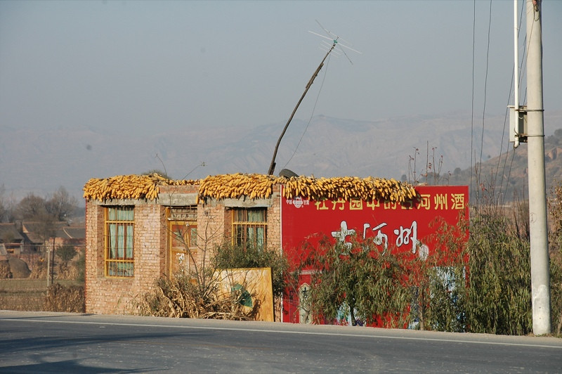 Corn Drying on the Roof Top - Gansu, China
