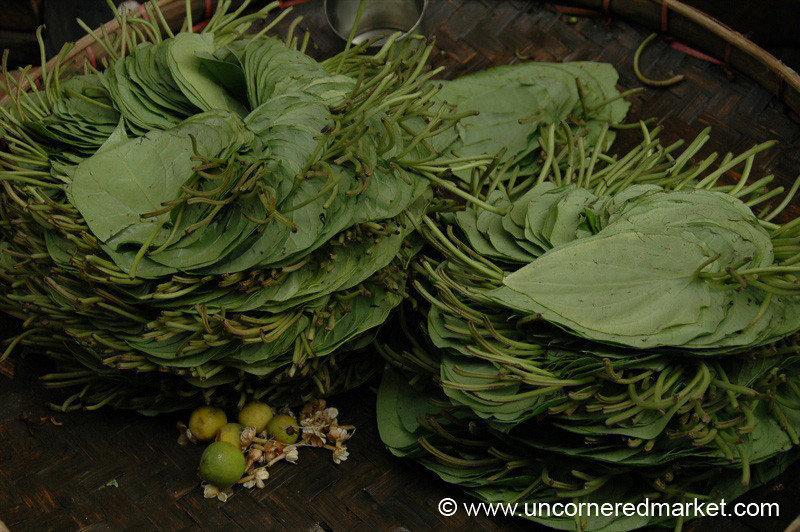 Betel Leaf  - Rangoon, Burma (Yangon, Myanmar)