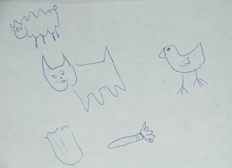Animal Drawings - Xi'an, China