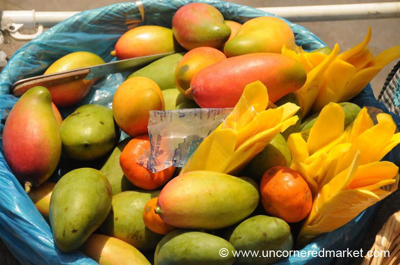 Ripe Mangoes - Antigua, Guatemala