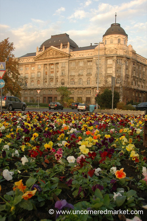 Flowers and Art Nouveau Building - Budapest, Hungary