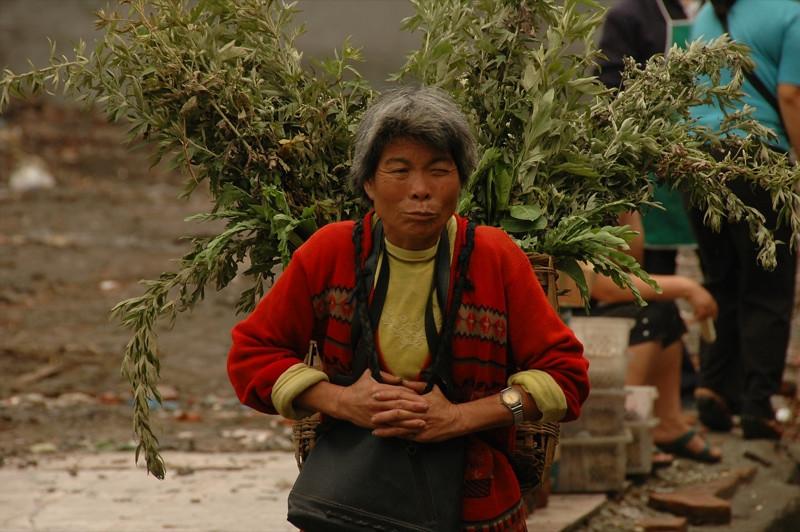 Chinese Woman Carrying Plants - Chengdu, China