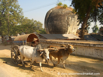 Ox-Driven Taxi - Mingun, Burma