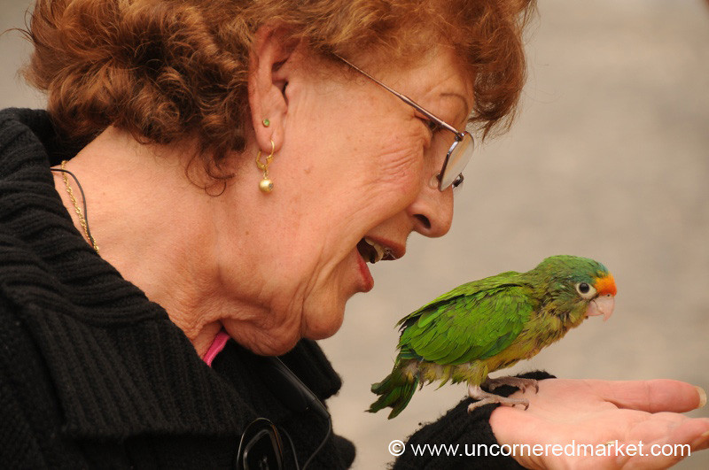 Woman Chatting With Parrot - Antigua, Guatemala