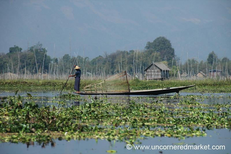Fisherman - Inle Lake, Burma