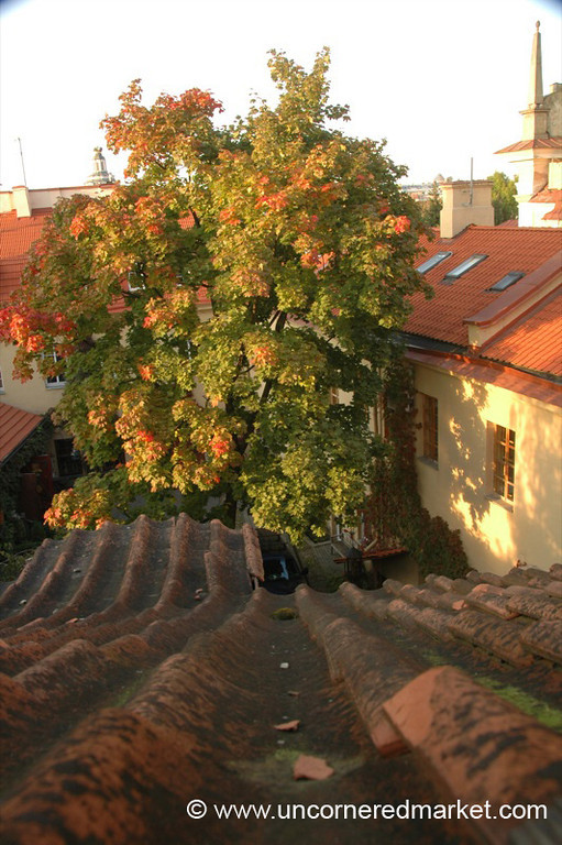 Rooftop View - Vilnius, Lithuania