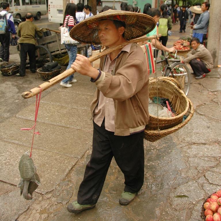 Turtle Vendor - Kaili, China