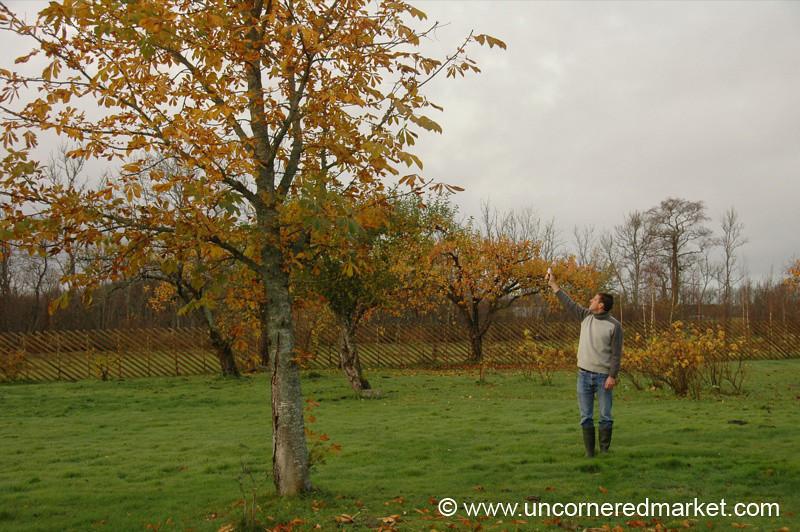 Looking for GPS Signal - Haeska, Estonia