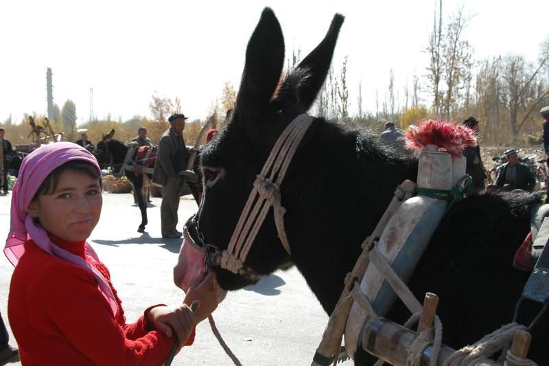 Uighur Girl and Her Donkey - Kashgar, China