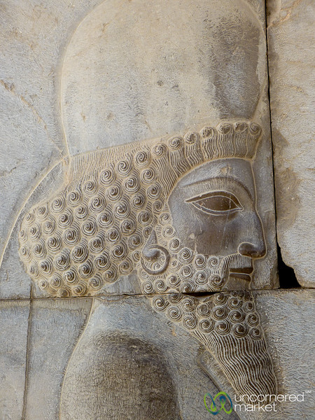 Median Solidier at Persepolis, Iran
