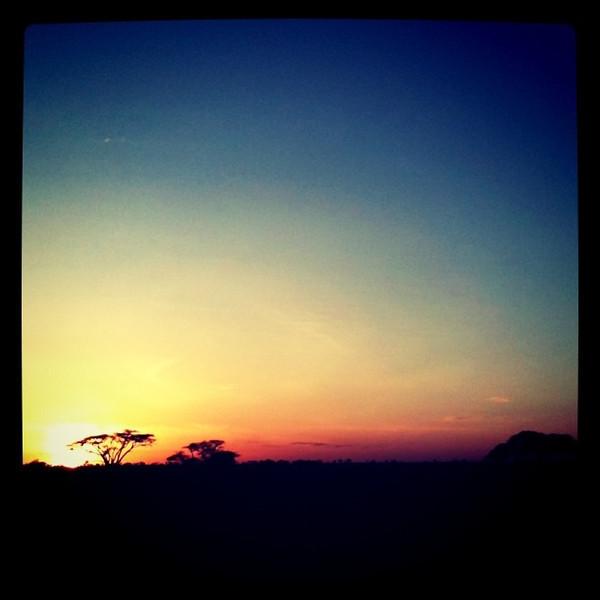 Sunrise in the Serengeti - Tanzania