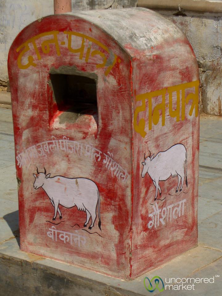 Cow Mailbox - Bikaner, India