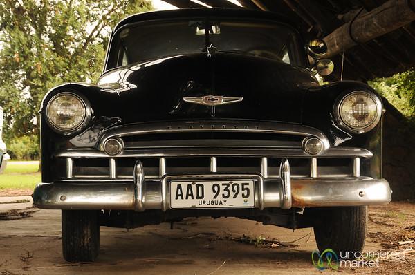 Classic Chevrolet - Juanico, Uruguay