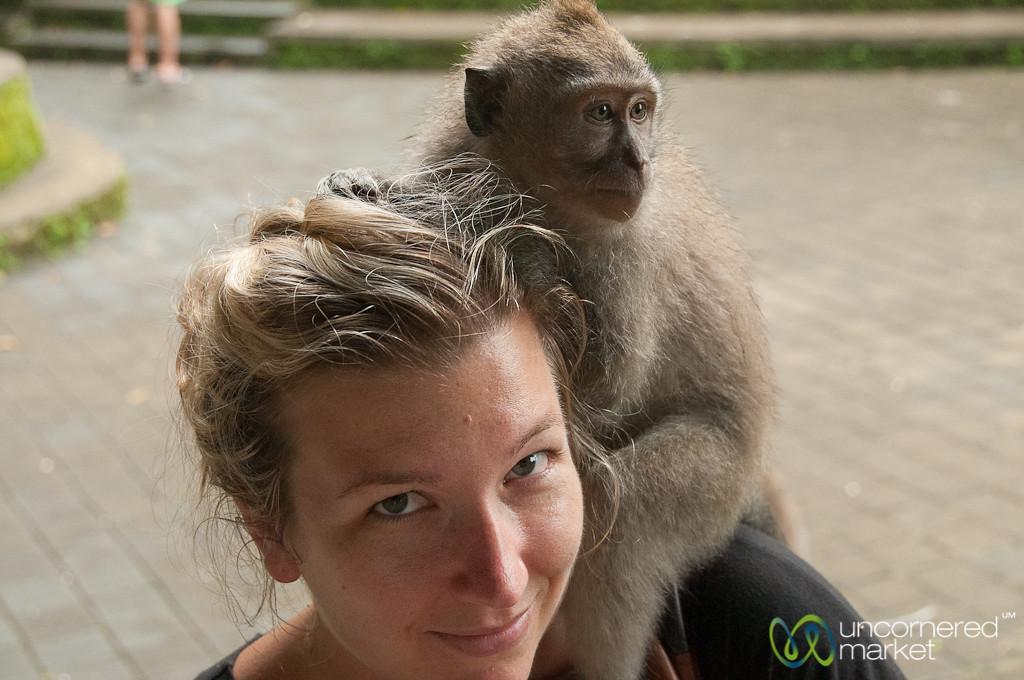 New Monkey Friend - Ubud, Bali