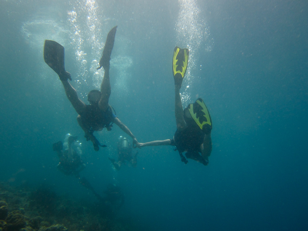 Diving Together at Menjangan Island  - Bali, Indonesia