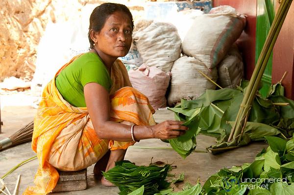 Bundling Together Betel Leaves in Khashia Village - Srimongal, Bangladesh