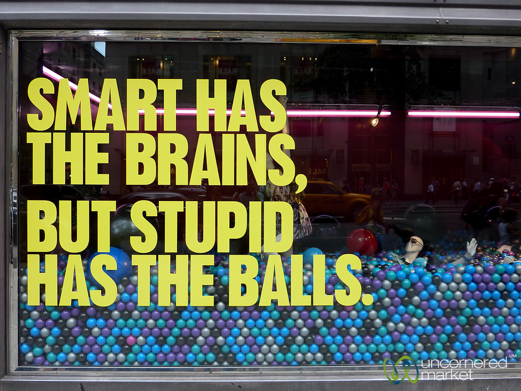 Does this mean Stupid is Better?  New York City