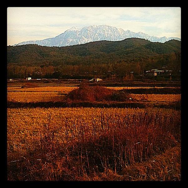 Iranian rice paddies, mountain shadows. Tehran to Rasht, Iran.