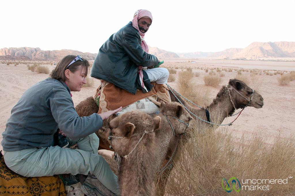 Soft, Nice Camels - Wadi Rum, Jordan