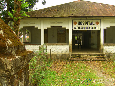 Once a Hospital - Katalguri Tea Estate, West Bengal (India)