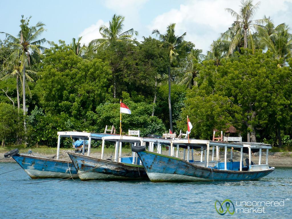 Boats at Menjangan Island - Bali, Indonesia