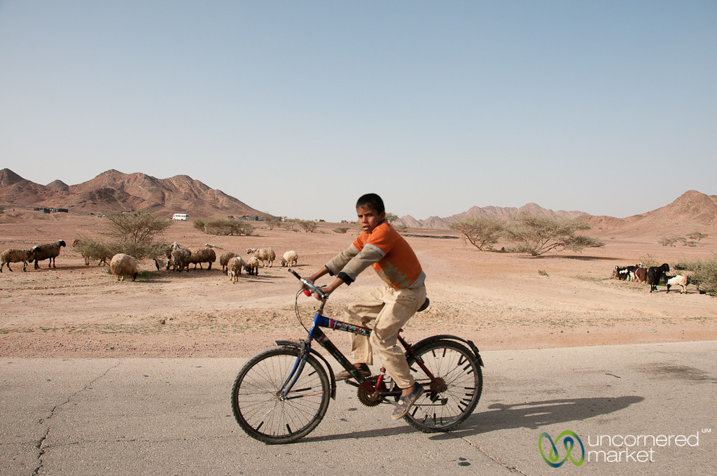 Bicycling Home from School - Feynan, Jordan