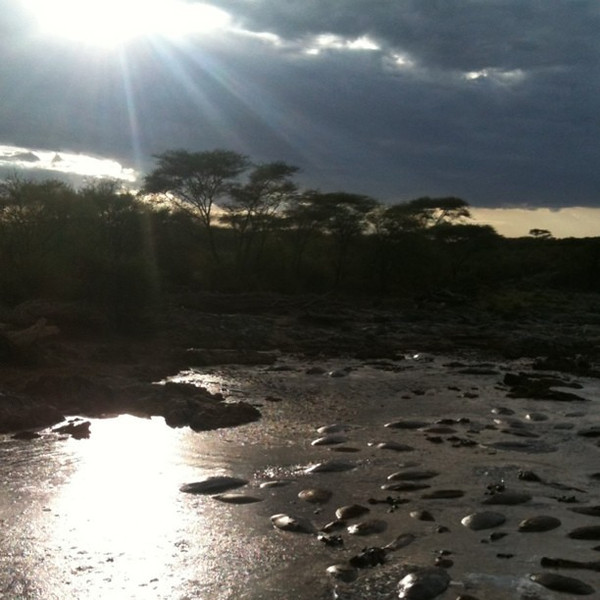 Sunset over hippo pool in Serengeti - Tanzania