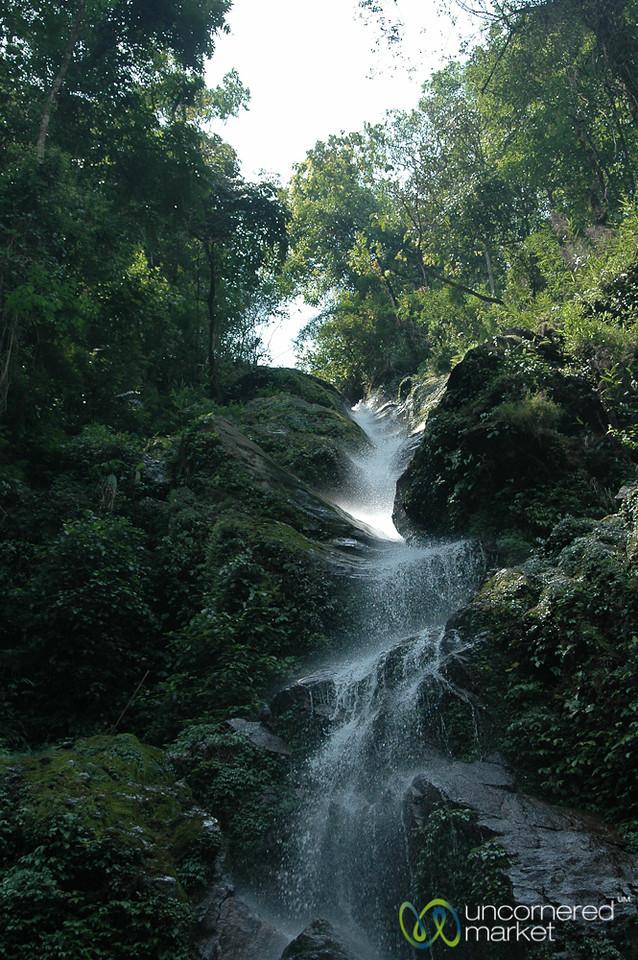 Rushing Waterfall - Pelling, Sikkim