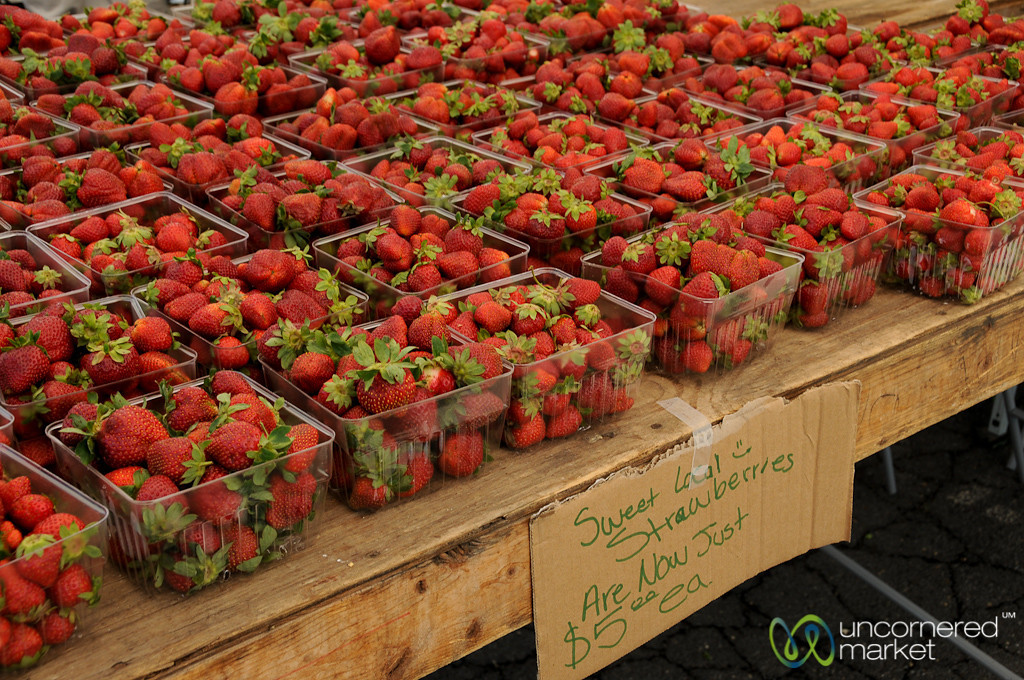Farm Fresh Strawberries - Vienna, Virginia