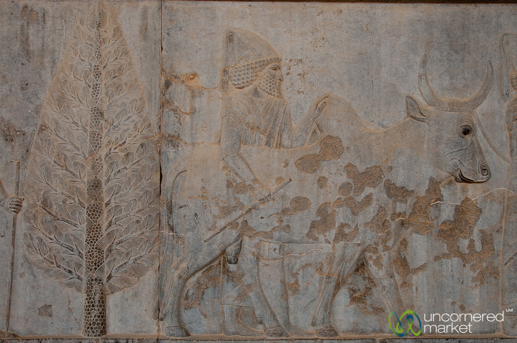 Apadana Palace Reliefs, Egyptians with Cows - Persepolis, Iran