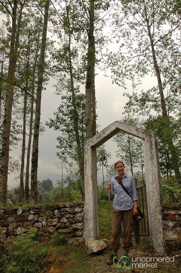 Hiking around Yuksom, Sikkim