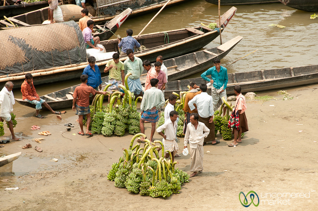Banana Stalks - Bandarban, Bangladesh