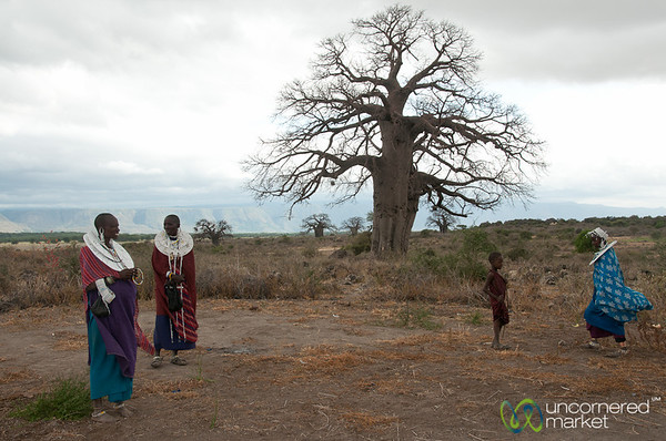 Masai Women at Baobab Tree - Lake Manyara, Tanzania