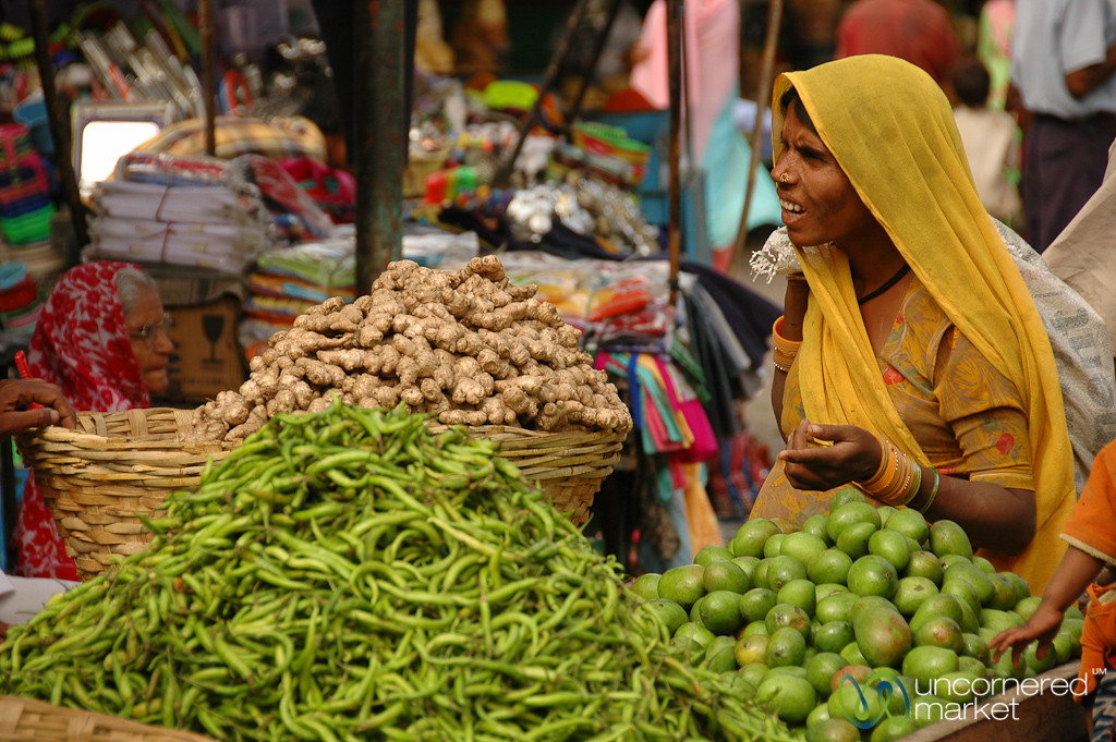 Shopping at the Fresh Market - Udaipur, India