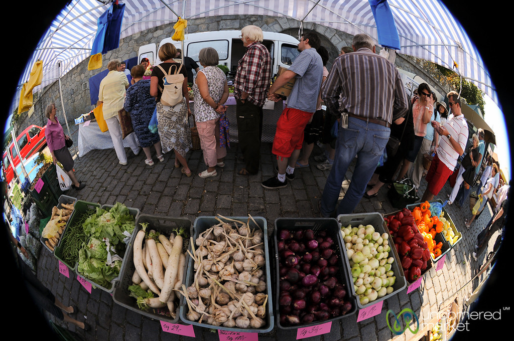 Fisheye View of Saturday Farmer's Market - Prague, Czech Republic