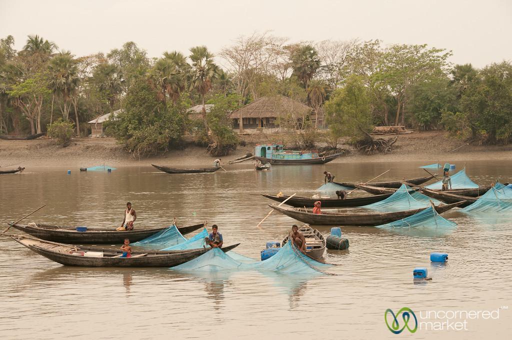 Fishing on the River - Khulna to Sundarbans, Bangladesh