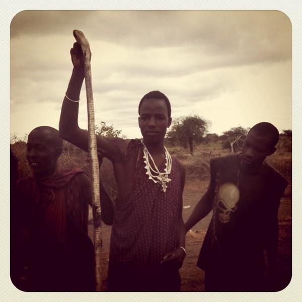 Killing cobra at Masai village - Lake Manyara, Tanzania #dna2tanzania